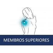 Membros Superiores (16)