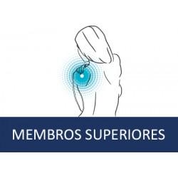 Membros Superiores